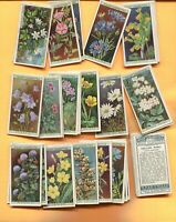 1923 W.D. & H.O. WILLS CIGARETTES WILD FLOWERS COMPLETE 50 CIGARETTE CARD SET