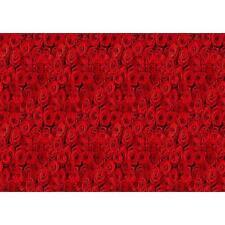 NUOVO ARCOBALENO rose rosse motivo floreale fotografica da parete decorazione