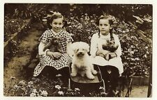 TWO ADORABLE LITTLE GIRLS, THEIR TEDDY BEARS, AND THEIR PUPPY AT A GARDEN PARTY