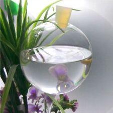 Durstkugeln Bewässerungskugeln Gießkugel Pflanzensitter Wasserspender 7 Größen