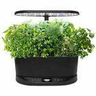 AeroGarden Bounty Basic with Gourmet Herb Seed Pod Kit - Black BNIB picture