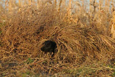 GHG Ground Force Dog Blind Ghillie Cover/Golden Harvest