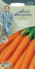Mr Fothergills - Vegetable - David Domoney Carrot Large - Jitka F1 - 500 Seeds