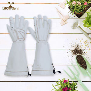 Long Gardening Gloves|Thorn Proof| Perfect for Rose Gardening and Beekeeping