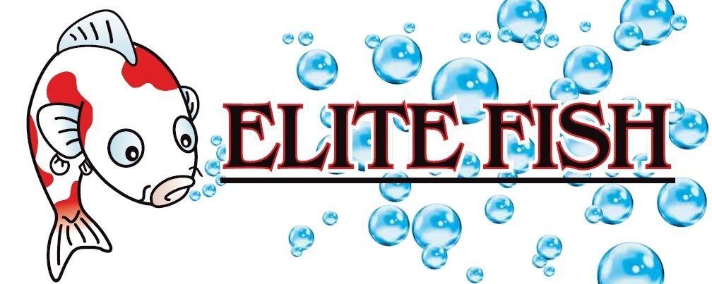 Elite Fish