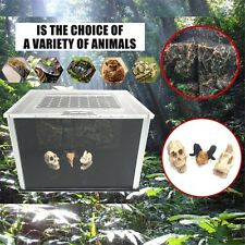 Acrylic Reptile Terrarium Habitat Gecko Lizard Snake Spider Vivarium Cage Tank