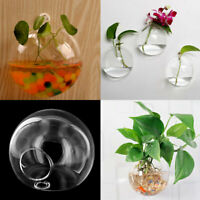Modern Hängende Glass Vase Blumenvase Pflanze Glas Wandvase Neu ZPN
