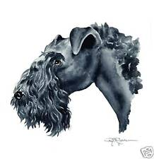 KERRY BLUE TERRIER Dog Painting ART 13 X 17 Signed DJR