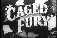 CAGED FURY (1948) DVD RICHARD DENNING, SHEILA RYAN