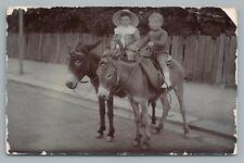 Donkey-Riding Boys RPPC Cute Antique Real Photo FULHAM London England 1908