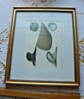 "Antique French Sea Shell Hand Painted Lithograph Includes Frame~L-13""X W-11""**"