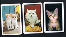 Playing Swap Cards  3  SEMI   VINT   KITTENS   CATS   WHITE & TABBY  W176