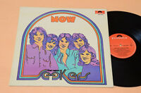 NEW SEEKERS LP NOW PROG 1°ST ORIG ITALY 1973 LAMINATED AUDIOFILI TOP NEAR MINT