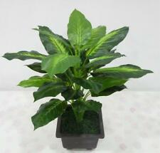 Evergreen Artificial Plant Bush Potted Tree Flower Home Lifelike 25 Leaves