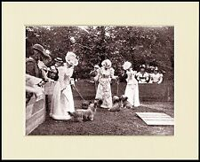 SKYE TERRIER EDWARDIAN LADIES AT DOG SHOW PHOTO PRINT MOUNTED READY TO FRAME