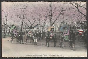 Postcard Japan the Cherry Blossom in Park at Yokohama antique Rickshaw Geisha
