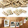 100% NATURAL Decking Mini Wooden Clothe Photo Paper Peg Clothespin decoration