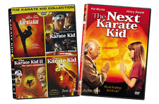 The Karate Kid: Complete Movies 1 2 3 + Remake + Next Karate Kid Box/DVD Set(s)