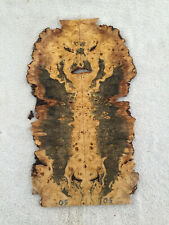 Buckeye burl material head stock book match crafts  .30 x 8-11 x 18.75