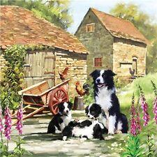 Square Jigsaw - Border Collie Barn