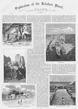 Desierto de Kalahari exploración 2x Antiguo Impresiones De 1886 Con Numerosos Grabados