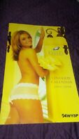 Vintage Philadelphi Eagles Cheerleader Wall Calendar 2003/004 Rare. lingerie