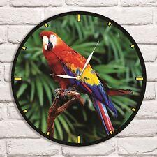 Parrot Ara Color design vinyl record wall clock home art office shop hobby vet