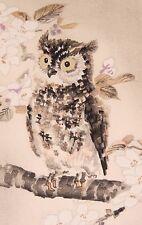 Japanese Woodblock Owl Print Owl Cherry Blossom Tree by Eiichi Kotosuka