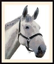 Horse Head, Cross Stitch Kit