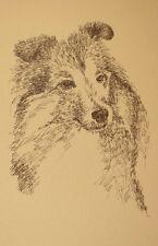Shetland Sheepdog Dog Art Print #34 Stephen Kline adds dogs name free. Sheltie