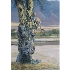 """Daniel Smith """" Vantage Point """" # 138/950 Mint W/Cert  Jaguar Leopard"""