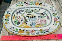 "Beautiful Large China Oval Ashworth Bros. Bird of Paradise Serving Platter  15"""