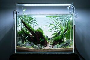 30C/45P OF LOW IRON SUPER CLEAR AQUARIUM TANK (ONLY TANK AND SOME GIFTS)