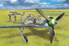 HobbyBoss 81721 1/48 Focke-Wulf FW190D-13 Plastic Model Aircraft Kit