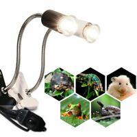 Turtle Reptile Supplie Clip UVB/UVA Bulb Lamp E27 Base Ceremic Heating Holder