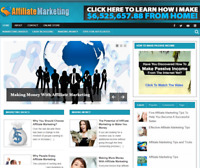 Affiliate Marketing PLR Niche Blog Wordpress Ready Made Website