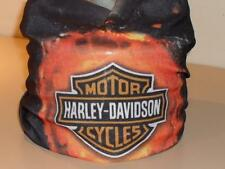 Harley Rider Motorcycle Bandana Face Mask Headband Tube Biker