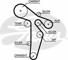 Audi A3, A4, VW Golf, Passat, Seat, Skoda Timing Belt Gates 5648XS Timing Belt