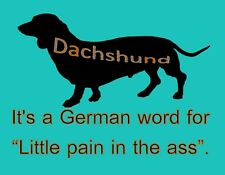 METAL MAGNET Dachshund German Word For Little Pain In Ass Dog Humor MAGNET