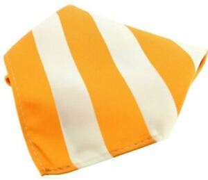 David Van Hagen Mens Striped Polyester Pocket Square - Orange/White