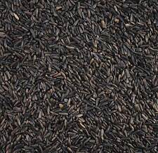 10KG MALTBY'S WILD BIRD NIGER NYJER SEED