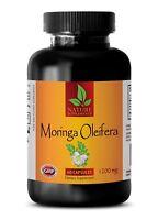 Moringa Powder - Moringa Oleifera Leaf Extract 1200mg - Weight Loss -60 Capsules