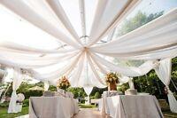 "40 Yards 120"" Wide Voile Chiffon Fabric Sheer Draping Drape Panel Wedding SALE"