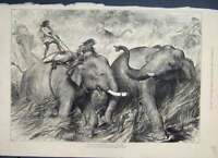 Original Old Antique Print 1876 Tame Elephants Hunting Wild Ones 19th
