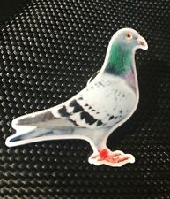 RACING HOMING PIGEON BREEDER ENAMEL PIN BADGE GIFT (PB19) BIGGER THAN OTHERS