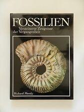 Fossilien Richard Moody Versteinerte Zeugnisse der Vergangenheit