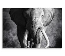 120x80cm TELA BARELLA AFRICA ELEFANTE vista frontale