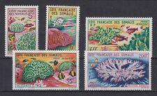D. Fische  Meerestiere  Französisch Somaliküste  351 - 55  ** (mnh)