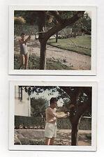 Lot 2 Photos Couleur Polaroïd Couple Jardin Scie Scier Arbre Curiosité Vers 1960