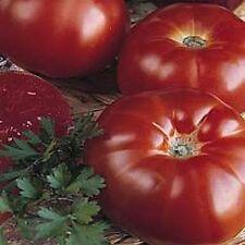 Marmande Paris Heirloom Tomato 20 Seeds Moon Gardens Simply Grown Beautifully